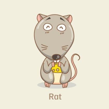 胆小如鼠是何物《成语列句》 胆小如鼠是何物跟什么数字有关